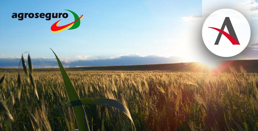 Agroseguro apuesta por Aitana para actualizar su software de gestión contable y financiero