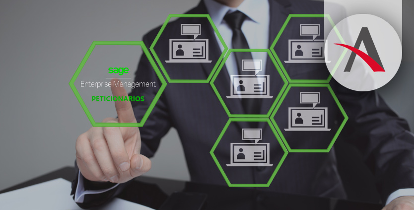 Peticionarios, Tipos consultas Sage Enterprise Management