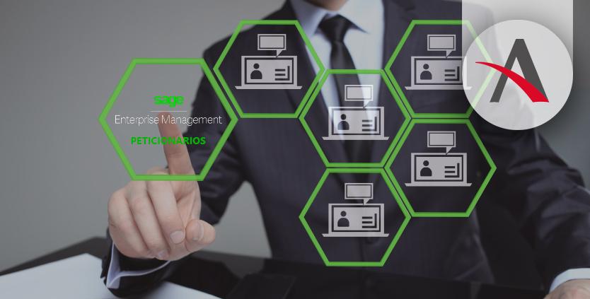 Peticionarios, Tipos consultas Sage Enterprise Management